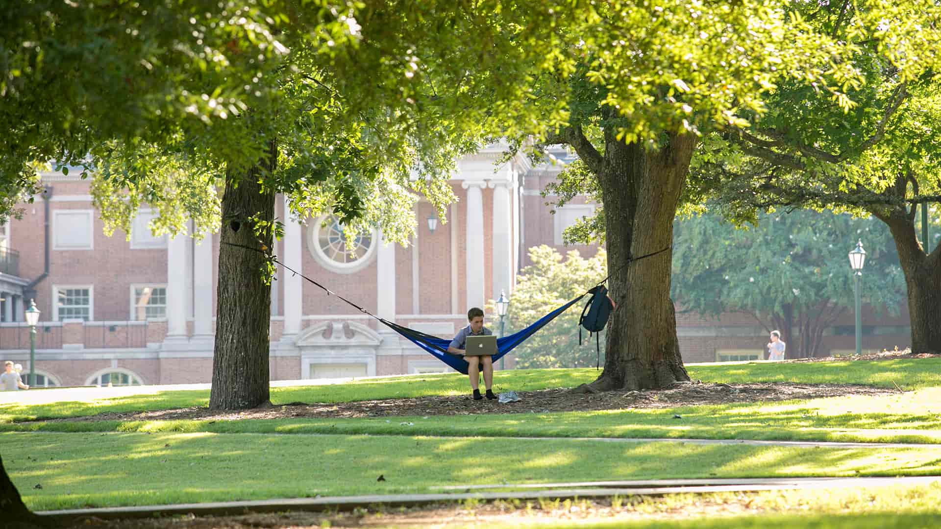 male student with laptop in hammock