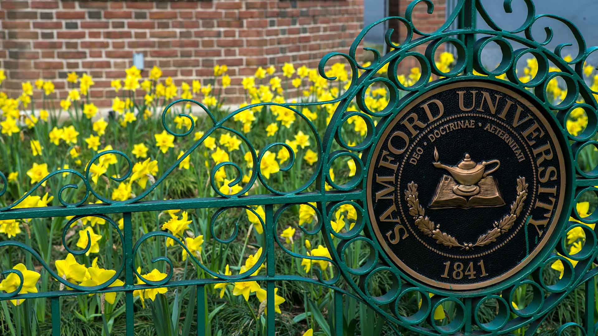 university seal and daffodils