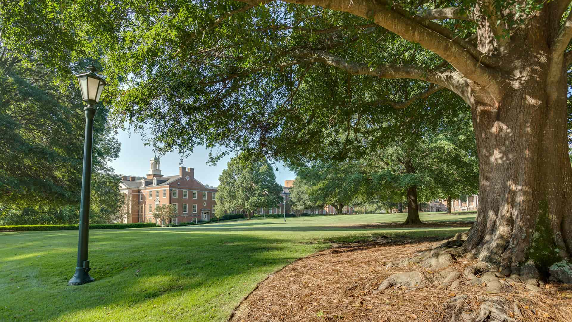 Samford Hall with crepe myrtles header