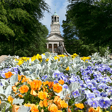View of Samford University quad