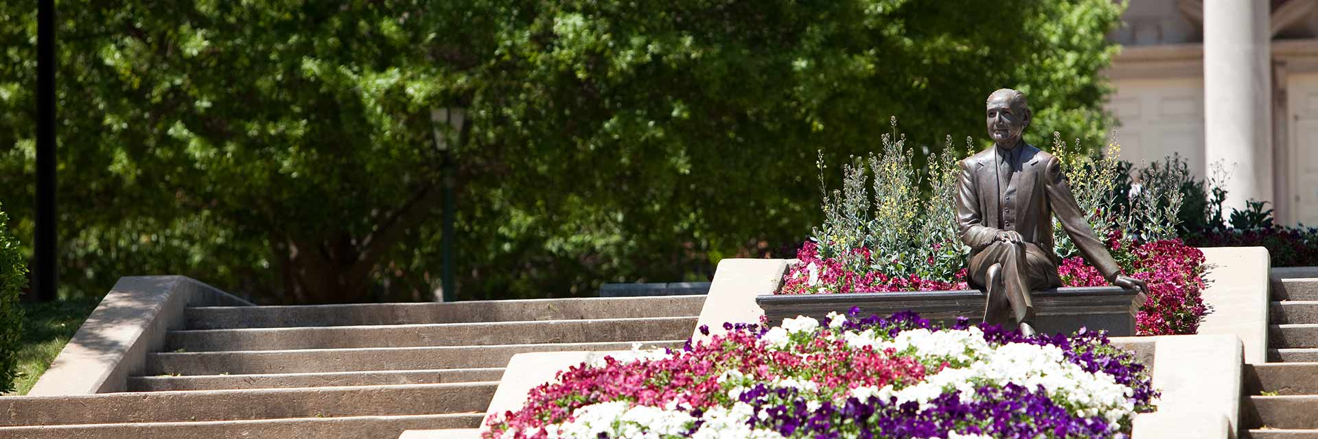 mr beeson and cascade of flowers header